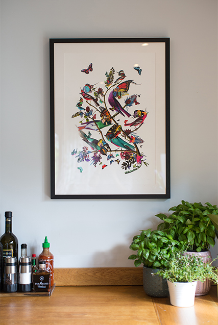 colourful Bird artwork in picture frame in the kitchen